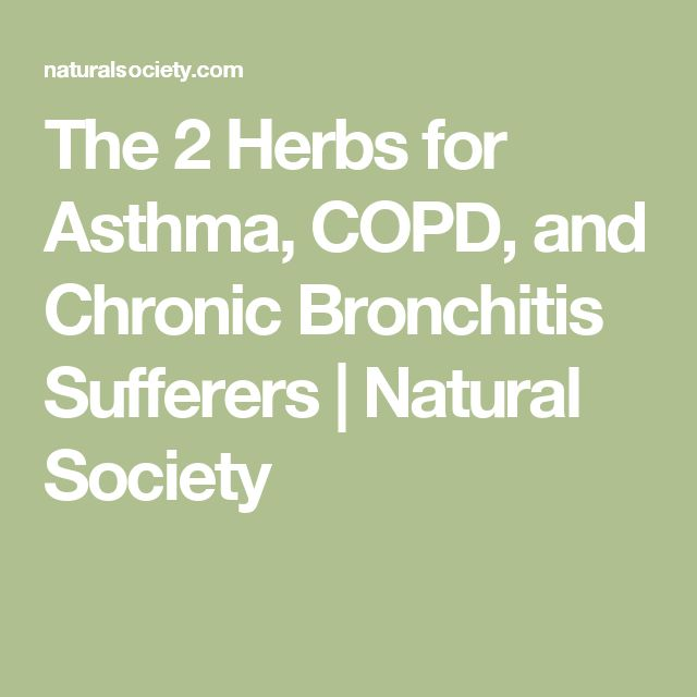 The 2 Herbs for Asthma, COPD, and Chronic Bronchitis Sufferers | Natural Society
