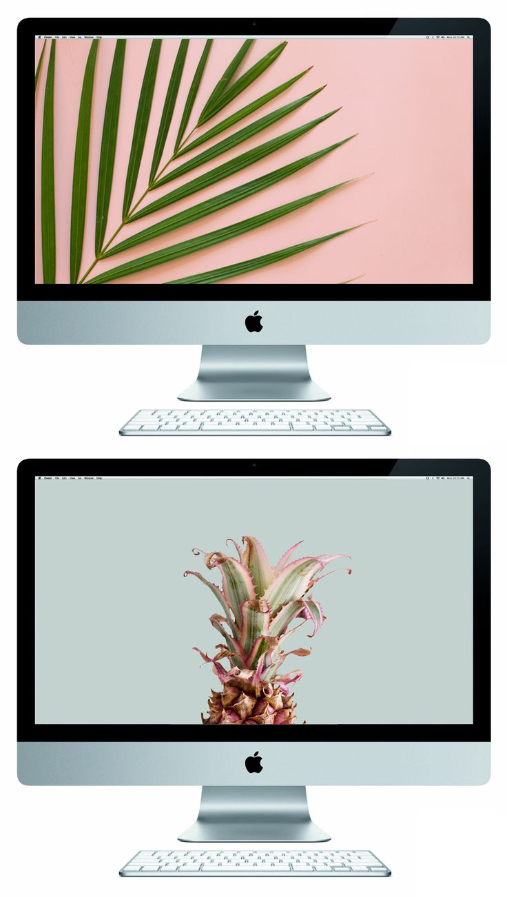 Free Summer Desktop Wallpapers // Pineapple and fern leaf desktop and phone wallpapers agains pastel pink and blue background