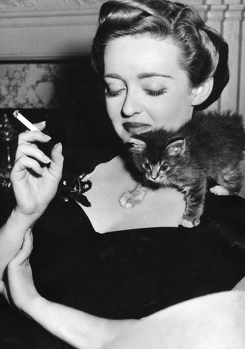 Bette Davis and her kitten. Born: May 12, 1907, Hartford, CT Died: June 29, 2003, Fenwick, CT Cause of death: breast cancer