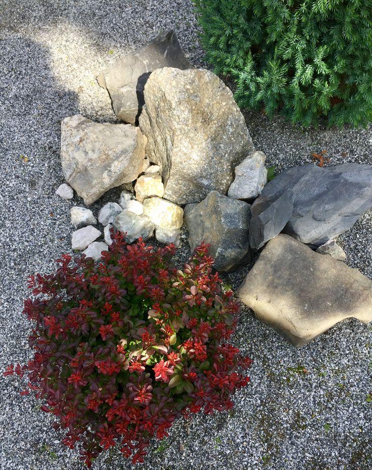 My Garden Details.
