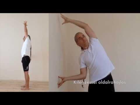 Soha többé hátfájás! 6x1 perc gerinctorna - 4. rész - YouTube
