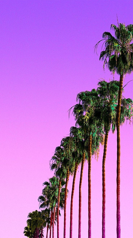 Purple palms iPhone wallpaper