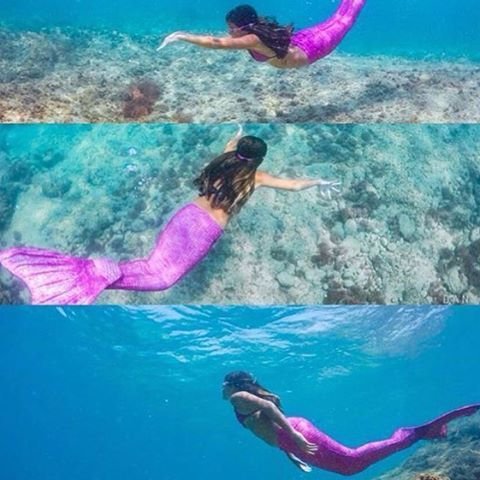 25 Best Ideas About Real Mermaid Tails On Pinterest Mermaid Tails Mermaid Swim Tail And Buy
