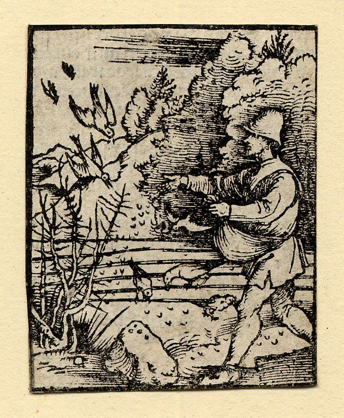 Book-illustration for an unpublished Plenarium or Postilla, the parable of the sower with the farmer on the l, throwing seeds onto a field, and birds picking the seed, and letterpress on the verso.  c.1503  Woodcut