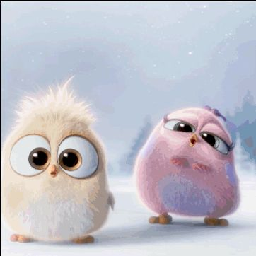 Cute Animated Angry Birds cute animated bird gif screen angry birds