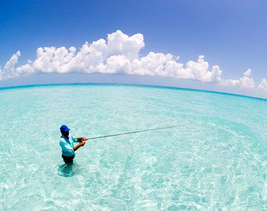 28 best flats fishing images on pinterest fishing for Bahamas fishing license