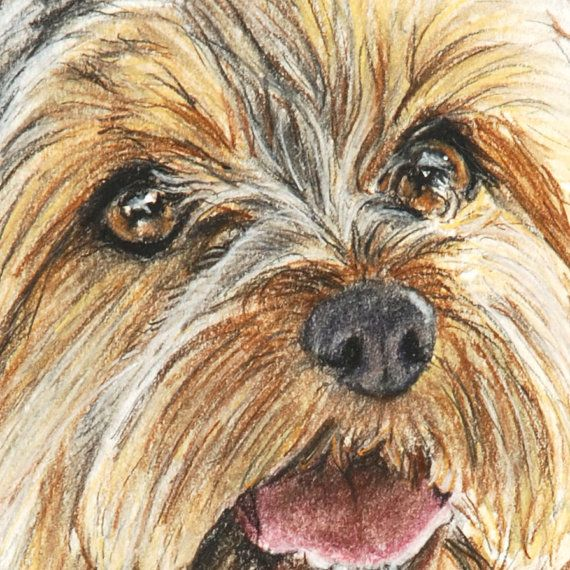 Yorkshire Terrier Art Print Painting 8x10 Yorkie Dog Art door ESArt