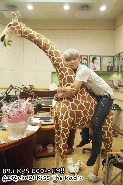Ryeowook   Super Junior   Omo he's so cute~~