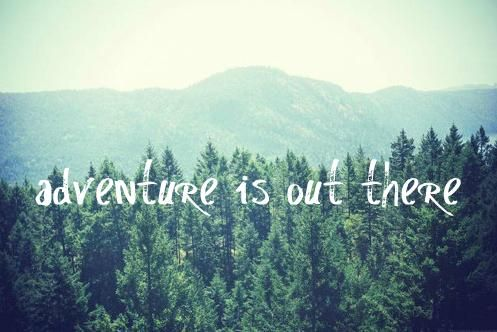 : Film, Little Girls, Adventure, Wood, Quotes, This Summer, Beautiful Places, Places To Go, Blog