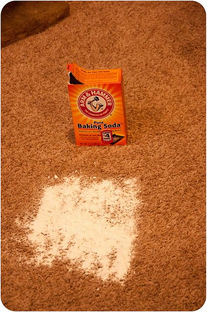 Carpet Stain Remover- HAVE to remember this for when we move!