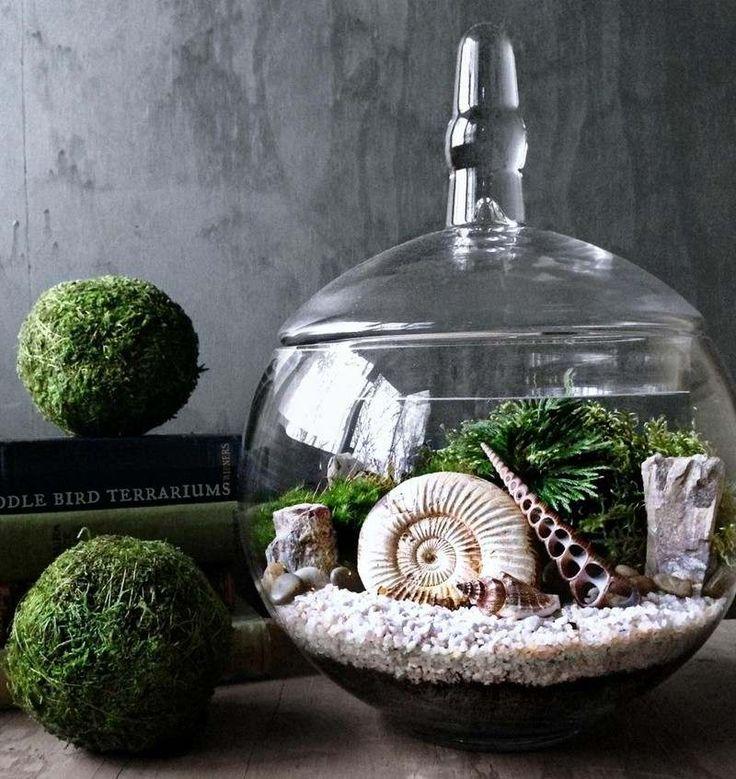 déco créative naturelle - terrarium en verre avec du sable blanc, des algues et des coquillages