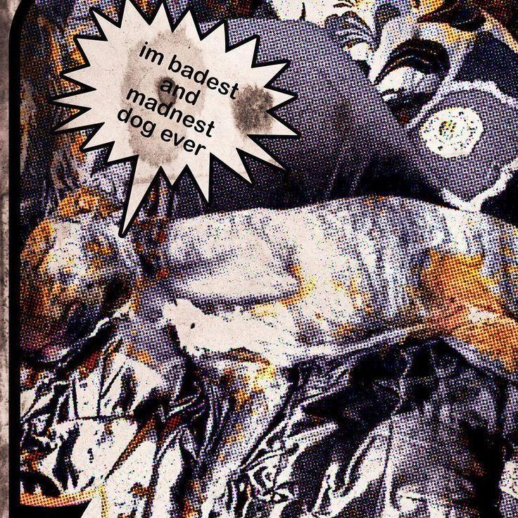 This dog kill several bear and elefant before great White hunter Me wrestling and beating that Bastardos @pitbulls.tv @pitbull.club @pitbullsofficial @pitbullgram_