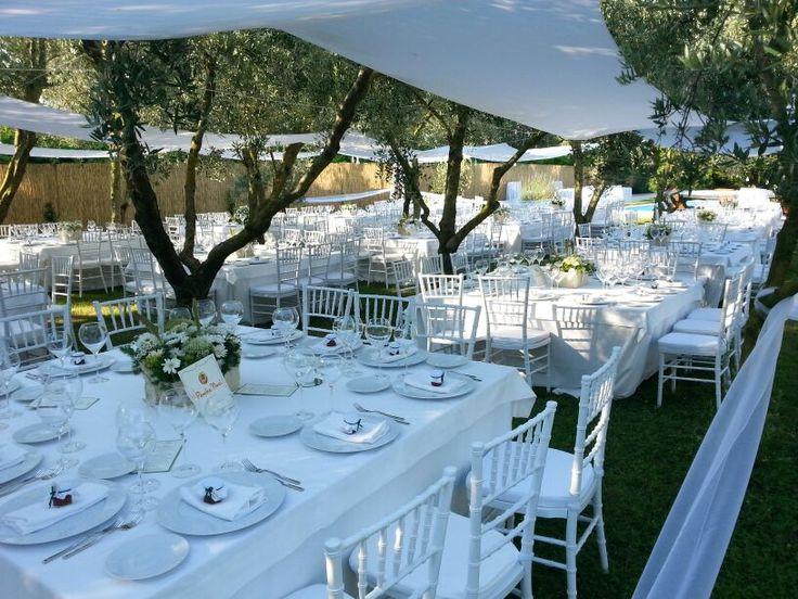 Mise en place e allestimento tavoli per matrimonio a stretto contatto con la natura