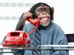 Prospecting Stinks. Stop Wasting Time And Money on Leads and Cold Calling. See How. http://janmarc.magneticsponsoringonline.com