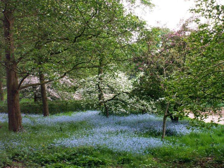 Arboretum, Wageningen, The Netherlands.... miss this place!