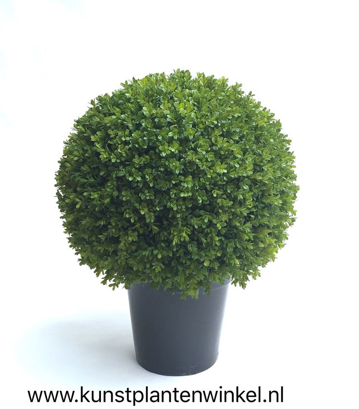 Buxus kunstplant / Boxwood artificial plant