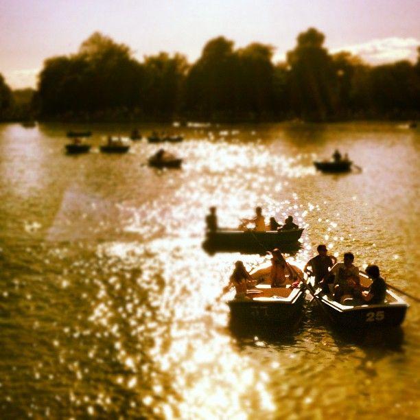 Dreamy boats at Retiro Park #madrid #travel