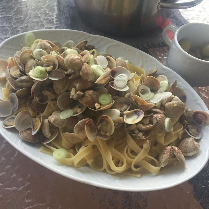 [homemade] baby clams steamed in a garlic white wine reduction over a bed of tagliatelle while on vacation in Spain. It's nice when your hotel room has a kitchen and you're beside the Mediterranean.