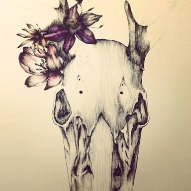 25 best ideas about deer skull drawing on pinterest
