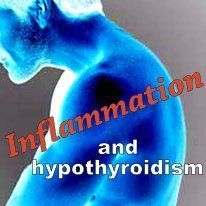 INFLAMMATION is a common problem for hypothyroid patients! This article explains the causes, labwork, and ways to treat it!!