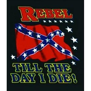1000 Images About Rebel Flag Stuff On Pinterest