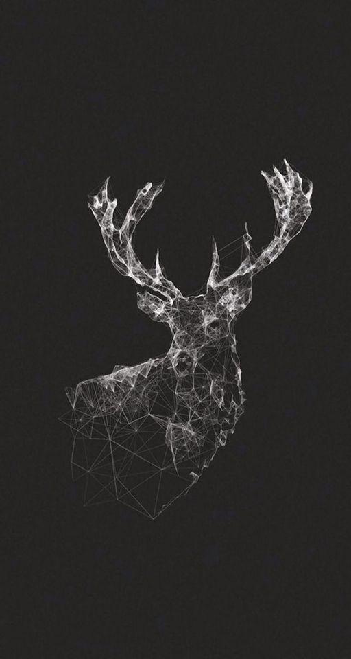 Deer wallpaper                                                       …