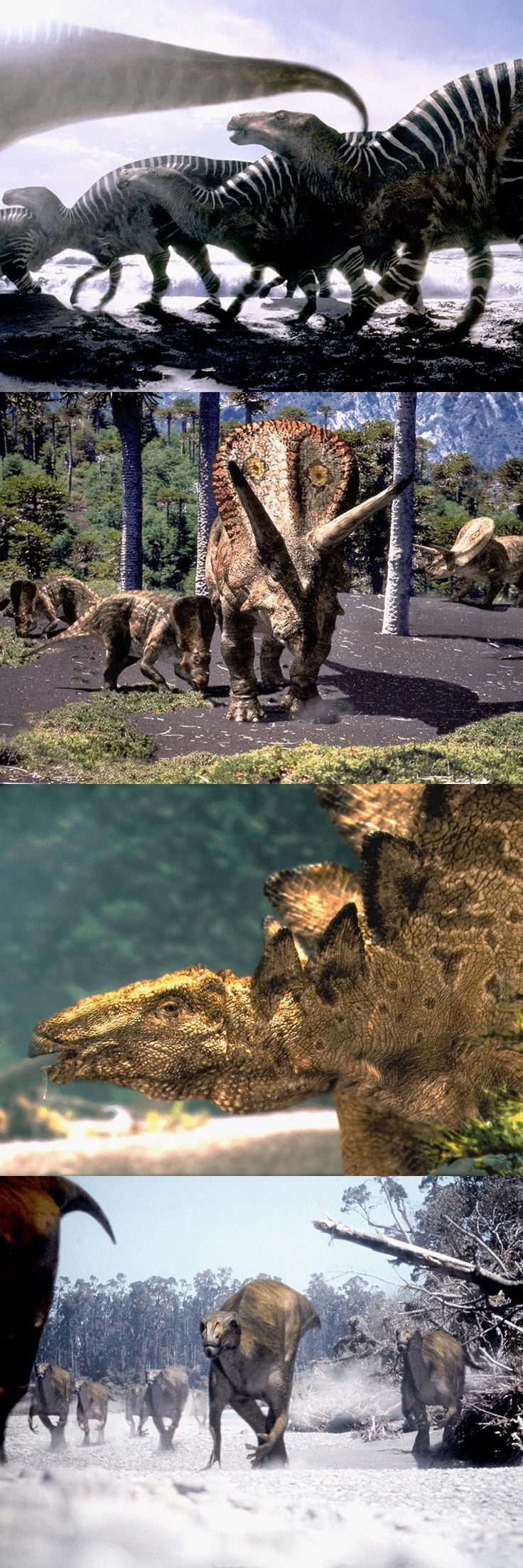 Walking With Dinosaurs<3 A lot of the stuff on there is inaccurate now but it was the show that really got me into dinosaurs