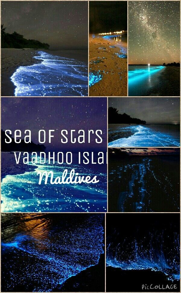 """Sea of Stars"" Vaadhoo Island, Maldives"