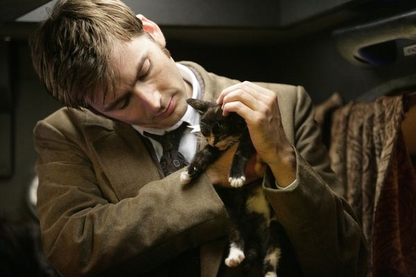 David Tennant and Kitten
