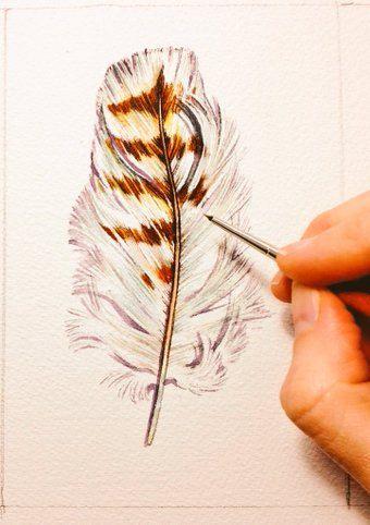 Une étude aquarelle originale dun plumage de la buse à queue rousse. Cest une des plumes de la poitrine. Notez les marques bruns charmant sur la plume blanche. Idéal pour les amoureux de la nature ou lornithologue amateur dans votre vie. Ces allure passe-partout et encadré. De leur propre chef, ou en groupe. 4 x 6 pouces sur papier aquarelle Arches