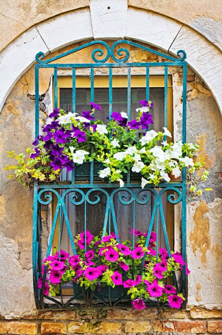 78 best images about italian window boxes on pinterest