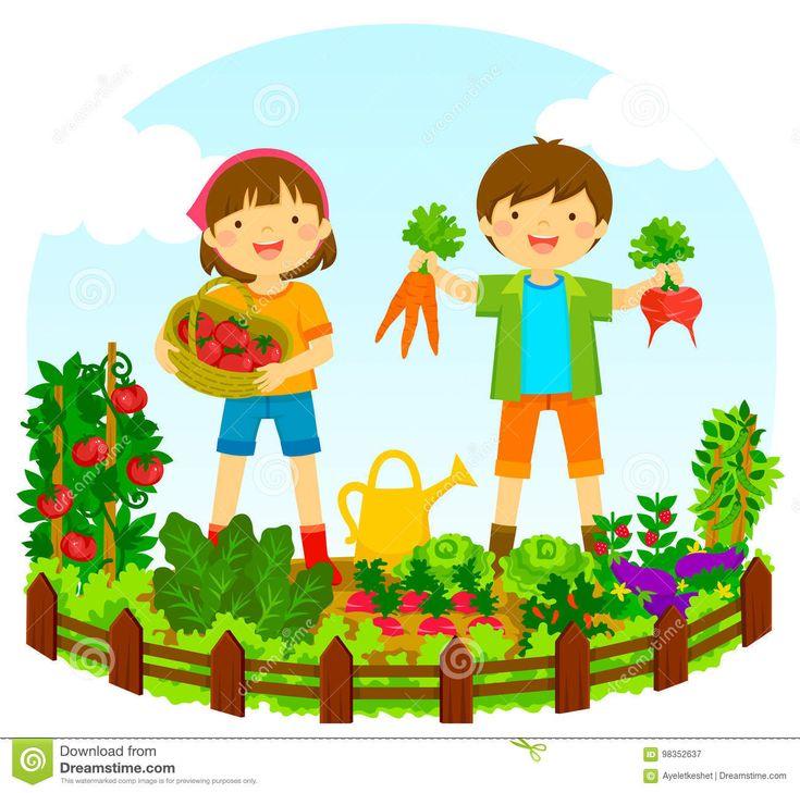 719 best z lds gek vegetables images on pinterest fruit rh pinterest co uk