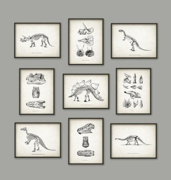 Dinosaurier-Print-Satz 9  Dinosaurier Skelett  von QuantumPrints
