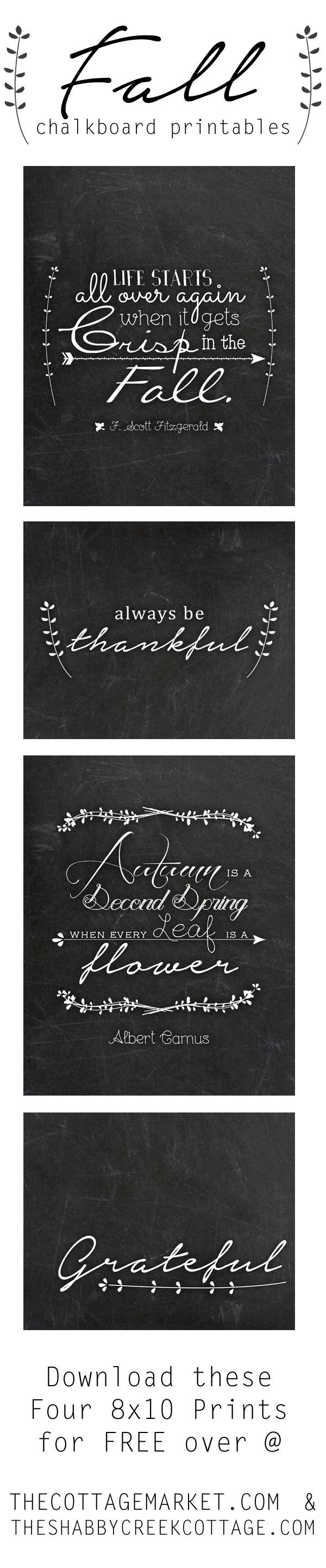 A beautiful set of FREE fall chalkboard printables - perfect for decorating and so much more! Unlimited free personal use!