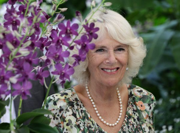 Camilla Parker Bowles Photos - Camilla, Duchess of Cornwall takes part in an Orchid Naming ceremony - where she and the Prince of Wales had a new orchid named after them, Dendrobium Duke Duchess of Cornwall - during a visit to the National Botanical Gardens on November 1, 2017 in Singapore.  Prince of Wales and Camilla, Duchess of Cornwall are on a tour of Singapore, Malaysia, Brunei and India. - The Prince Of Wales & Duchess Of Cornwall Visit Singapore, Malaysia, Brunei And India - Day 3