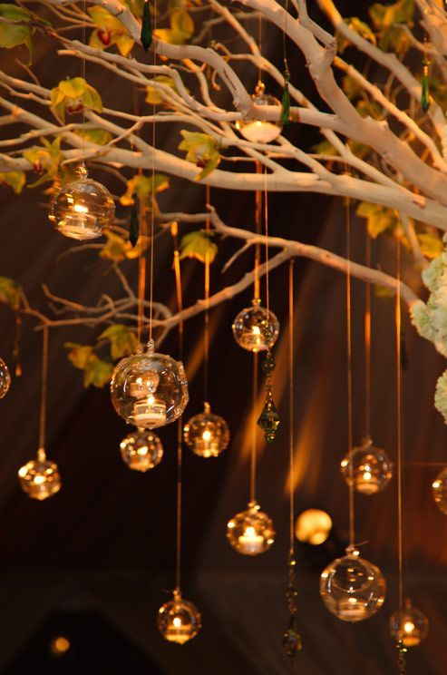 Glass bubbles hold tealight candles and gracefully descend from limbs of a tree.
