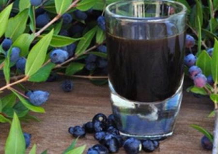 sok od trnjine