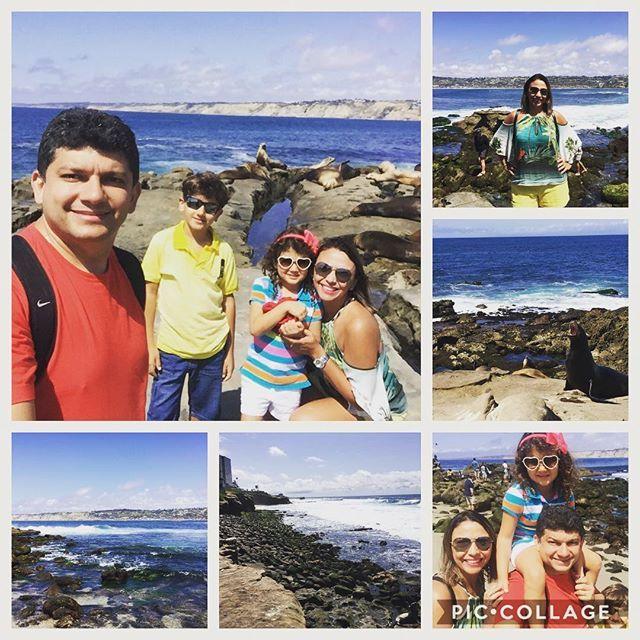 Uma das maravilhas de San Diego. La Jolla foi uma grande surpresa. Praia linda e gelada com a companhia de focas e leões marinhos. #ferias#california#viajaretudodebom #lajolla #lajollalocals #sandiegoconnection #sdlocals - posted by Sheila Vale  https://www.instagram.com/sheilavale. See more post on La Jolla at http://LaJollaLocals.com