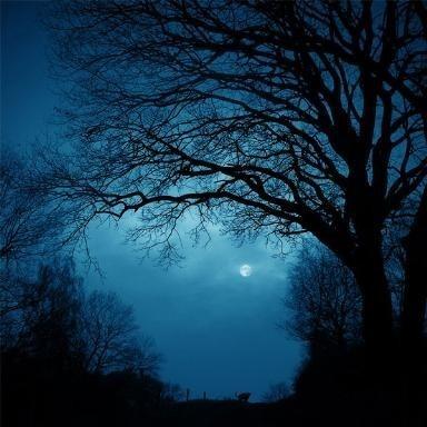 spooky, but lovely