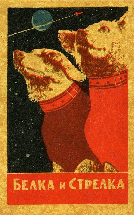 Belka and Strelka, Soviet space dogs