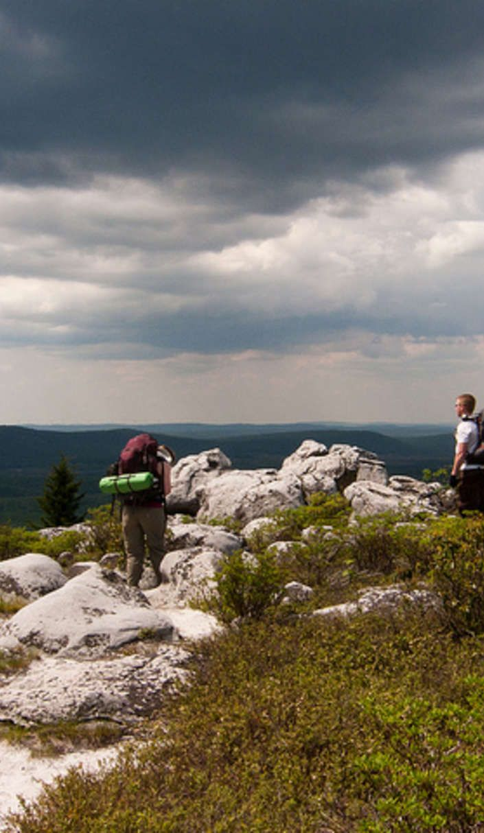 Harpers Ferry, Coopers Rock State Forest and Dolly Sods Wilderness offer the best views in the Mountain State.