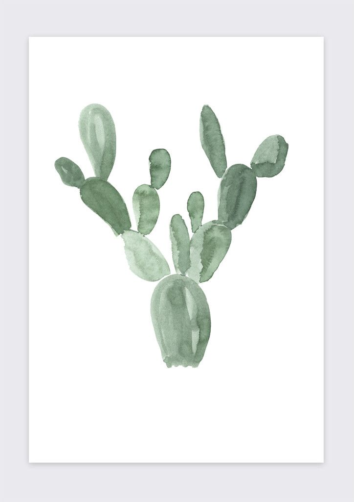 MINI CACTUS No 2