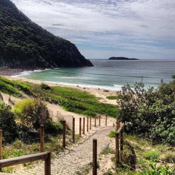 Zenith beach Shoal Bay , NSW Australia