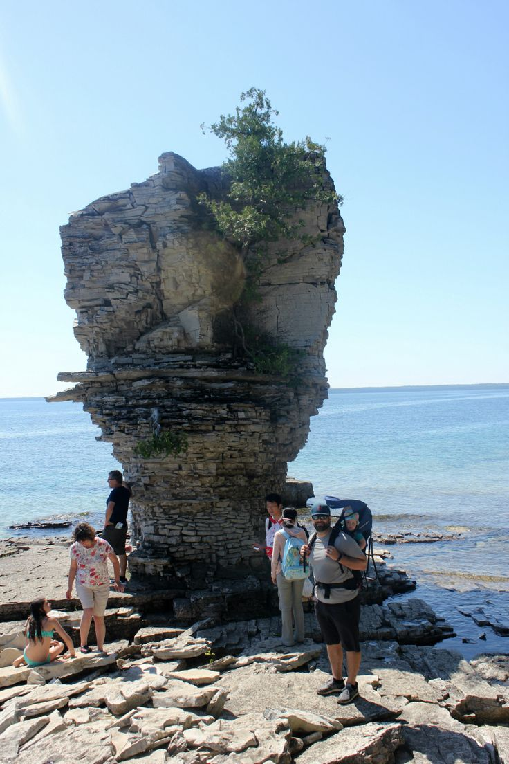 The Perfect Visit to Flowerpot Island Flowerpot island