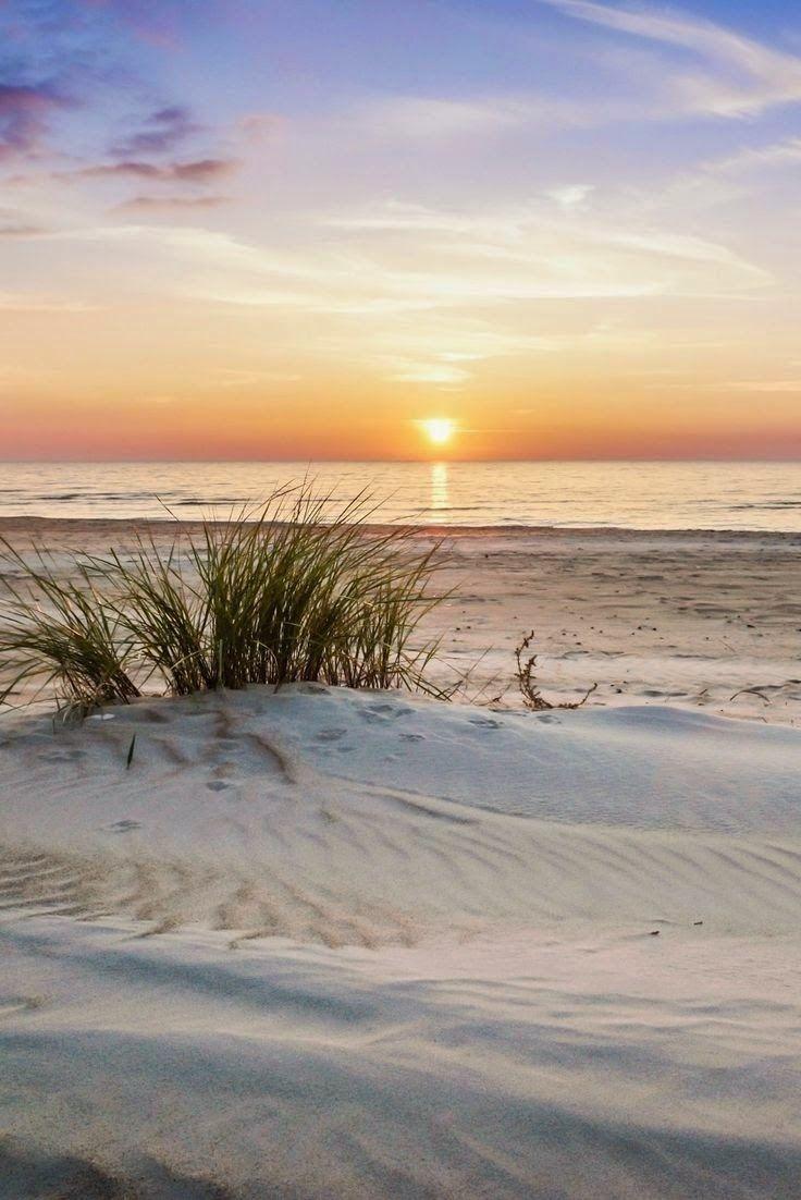 White Sands                                                                                                                                                                                 More