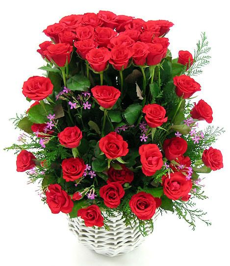 Arreglo de rosas rojas en canasta blanca                                                                                                                                                                                 Más