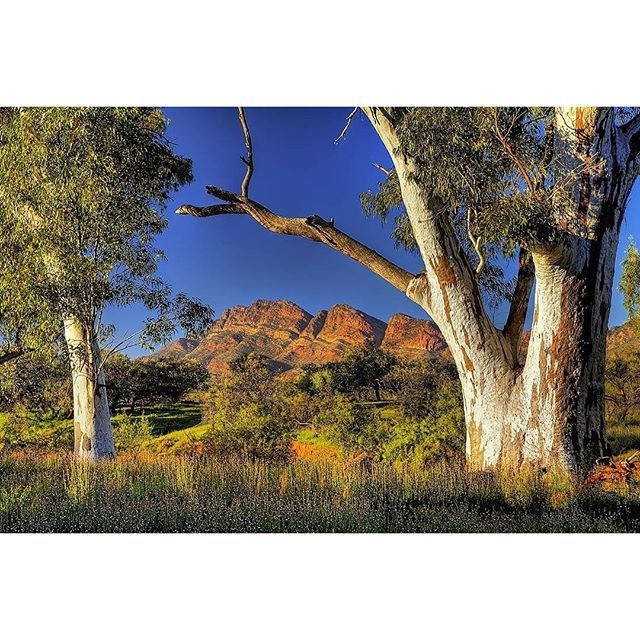 Flinders rangers, South Australia