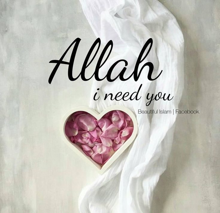 We all need Allah no matter what situation we are in right now, tomorrow and as long as we're in this world.