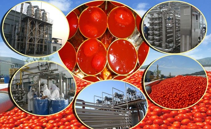 Tomato Paste Production Line Customized Tomato Sauce Production Solution Supplier Tomato Paste Sauce Tomato Paste Tomato Ketchup