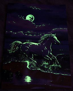 Jigsaw Puzzle 1000 Ravensburger Star Line Leuchtpuzzle Glow in the Dark- Moonlight Stallion @ Night | by www.nbfotos.de